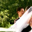 Happy newlywed couple in the park — Stock Video #42645453