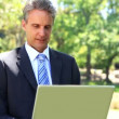 Businessman sitting on park bench using his laptop — Stock Video #42646213
