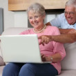 Senior couple using laptop together — Stock Video #42646535