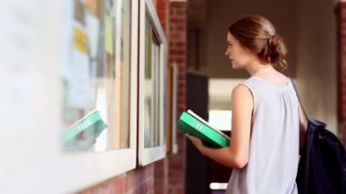 Pretty student checking the noticeboard — Stock Video