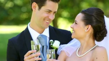 Happy newlyweds toasting with champagne — Vídeo de stock