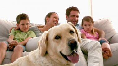 家族はフォア グラウンドでラブラドール犬とソファに座って — ストックビデオ