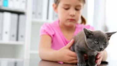 Little girl stroking a grey kitten — Stockvideo