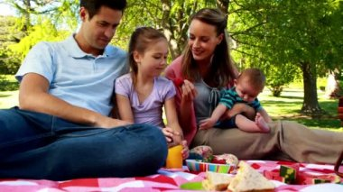 Happy family enjoying a picnic in the park — Stock Video