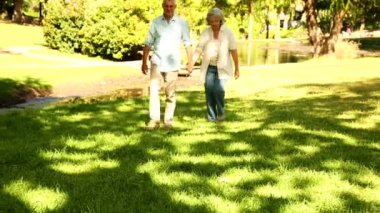 Retired couple walking in the park — Stock Video