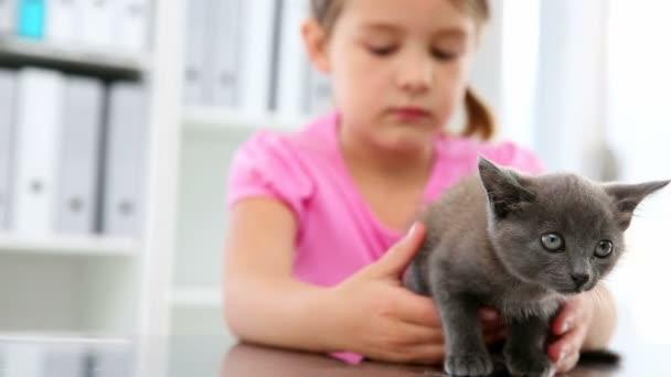 Petite fille caressant un chaton gris — Vidéo