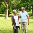 Retired couple walking in the park together — Stock Video #42652205