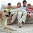 Family relaxing together on the couch with their dog on the rug — Stock Video #42653347