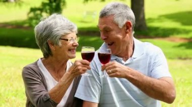 Affectionate senior couple drinking red wine in the park — Stock Video