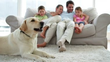 Family relaxing together on the couch with their dog on the rug — Stock Video