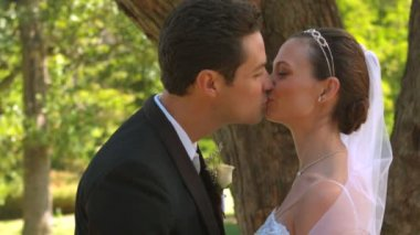 Newlyweds kissing in the park — Stock Video