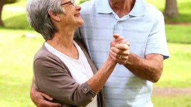 Affectionate senior couple in the park — Stock Video