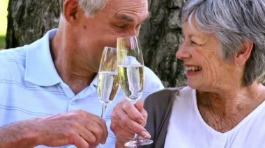 Senior couple relaxing in the park together having champagne — Stock Video