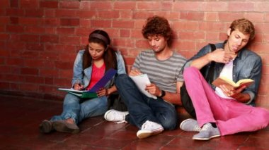 Students sitting against wall reading textbooks — Stock Video