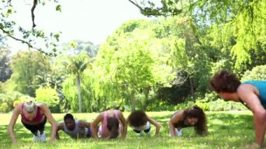 Fitness class doing push ups in the park — Stock Video