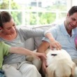 Family relaxing together on the couch with their labrador dog — Stock Video #42661521