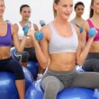 Fitness class sitting on exercise balls lifting hand weights — Stockvideo