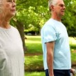 Retired couple lifting weights outside — Vídeo de stock