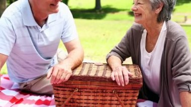 Senior couple relaxing in the park having a picnic — Stock Video