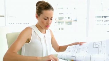 Pretty interior designer working — Stock Video