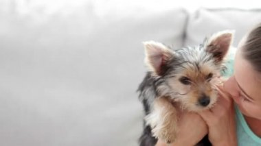 Woman cuddling her cute yorkshire terrier puppy on sofa — Stock Video