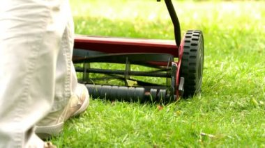 Man mowing the grass — Stock Video