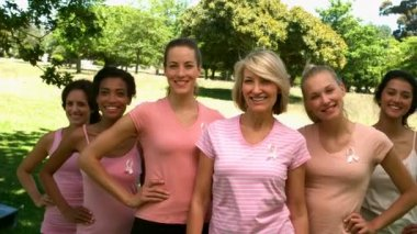 Group of women wearing pink for breast cancer in the park — Stock Video
