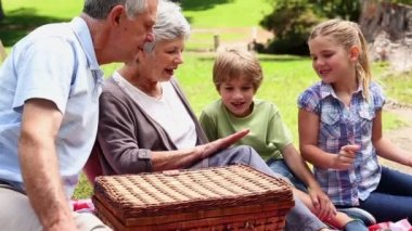 Grandparents having a picnic with their grandchildren — Stock Video