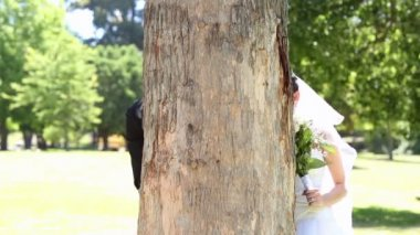 Newlyweds posing in the park beside a tree — Stock Video