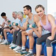 Class with dumbbells sitting on exercise balls in gym — Stock Photo #42914861