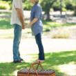 Picnic basket on blanket in park — Stock Photo #42915653