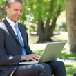 Businessman using laptop at park — Stock Photo