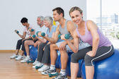 Class with dumbbells sitting on exercise balls in gym — Stock Photo