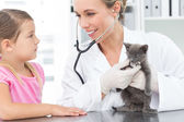 Veterinarian examining kitten with girl — Foto Stock