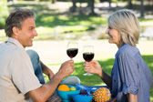 Couple toasting wine in park — Stock Photo