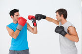 Side view of two male boxers practicing — Stock Photo