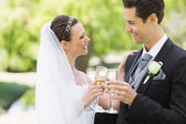 Newlywed couple toasting champagne — Stockfoto