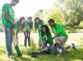 Environmentalists looking at plant — Stock Photo