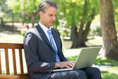 Concentrated businessman using laptop — Stock Photo