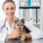 Veterinarian holding puppy — Stock Photo #42923577