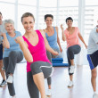 Smiling people doing power fitness exercise at yoga class — Stock Photo #42924199