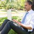 Mature businessman using laptop in park — Stock Photo #42924339