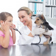 Vet with girl examining puppy — Stock Photo #42925325