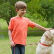 Boy with pet dog at park — Stock Photo #42927685