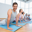 Group doing cobra pose in row at yoga class — Stock Photo