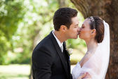 Romantic newlywed couple kissing in park — Stok fotoğraf