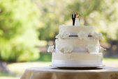 Close-up of figurine couple on wedding cake — Stock Photo