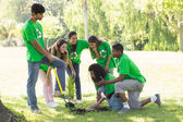 Young environmentalists in park — Stock Photo