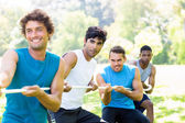 Friends playing tug of war in park — Stock Photo