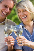 Cheerful couple toasting wine glasses — Stock Photo